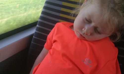 A jediná beruška nám na konci usnula :)